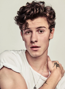 Shawn Mendes Age Wiki